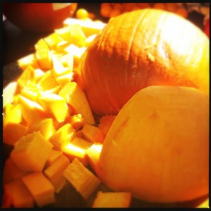 Fresh roasted pumpkin!