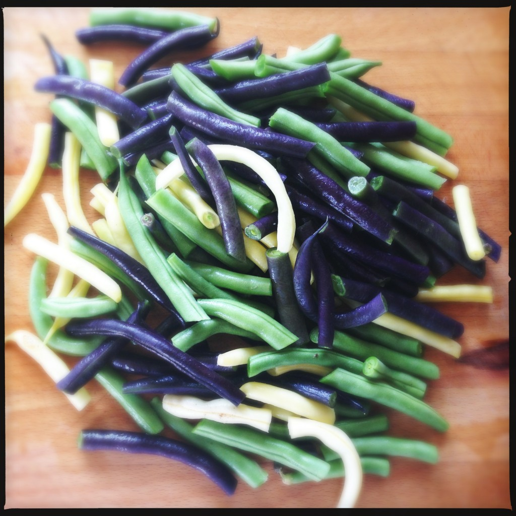 Beans fresh from the garden!